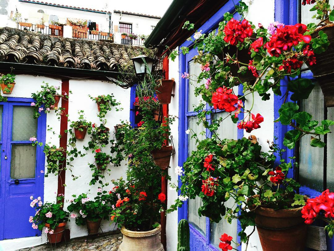 floral patio - spring festivals in Cordoba, Spain