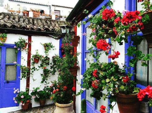 floral patio - spring festivals in Cordoba, Spain