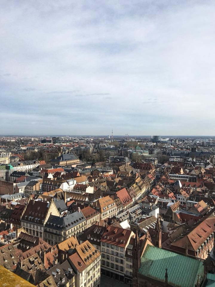 strasbourg cathedral views 4