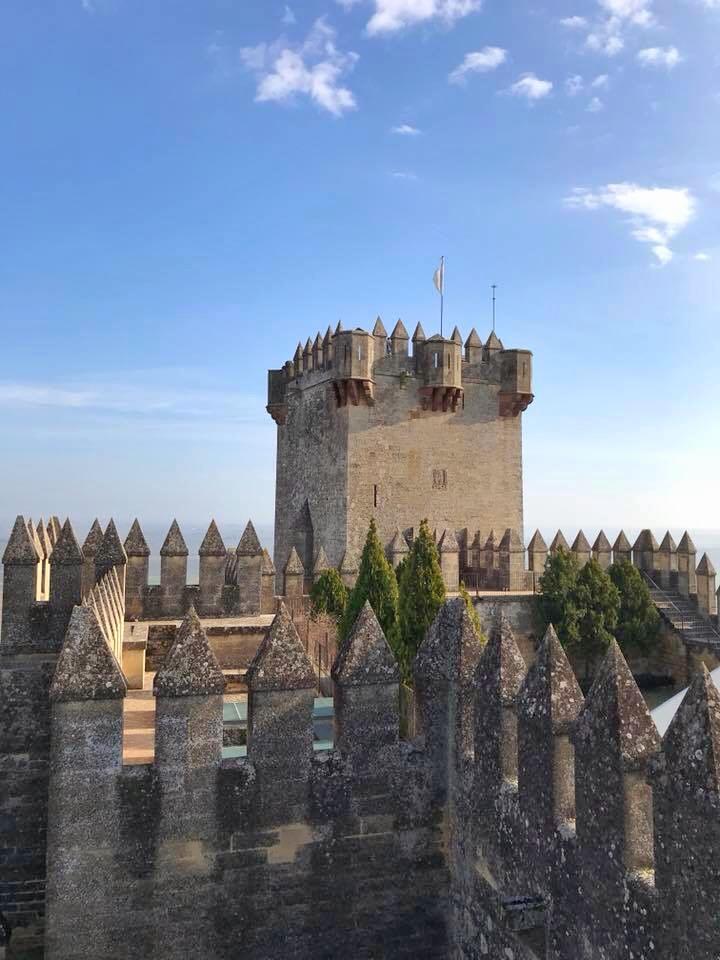 Castle Almodovar 2