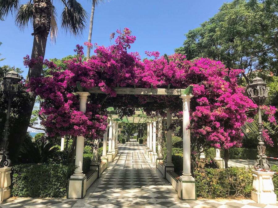 Flowered walkway in Cadiz, Spain